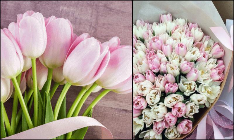 Güzel Olan Tek Şey Çiçeklerdir