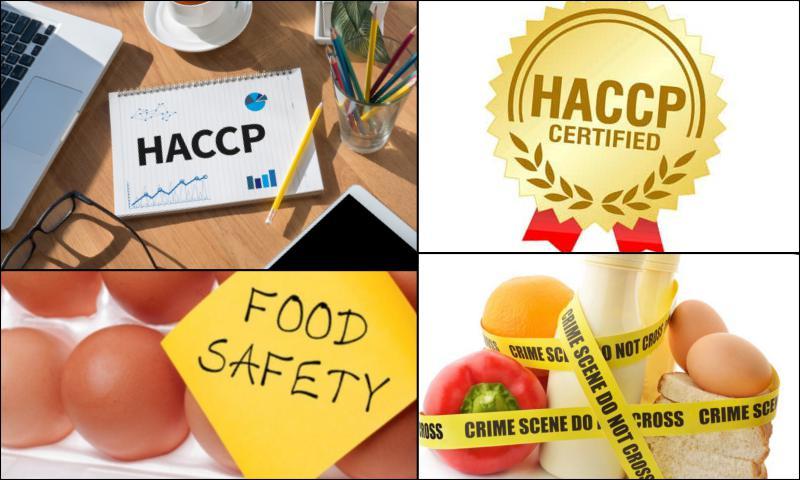 HACCP Gıda Güvenliği Yönetim Sistemi Nedir