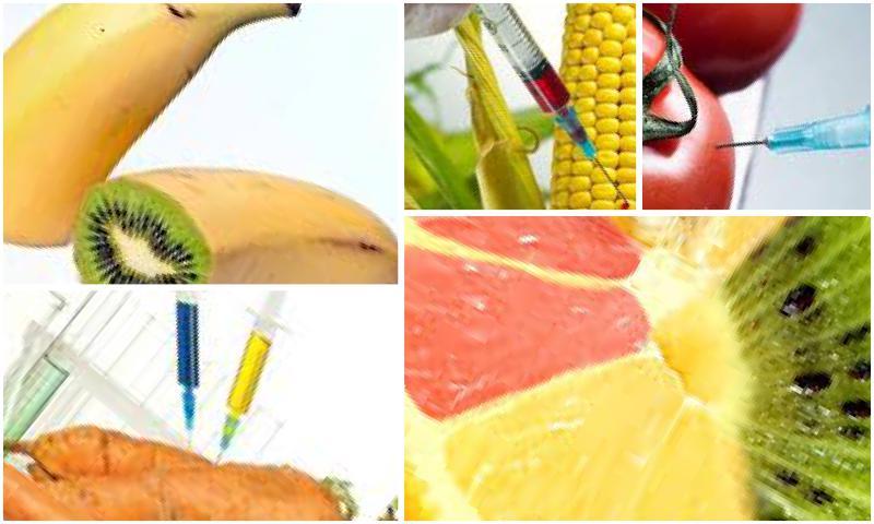 Gıda Güvenliği İçin Alınan Önlemler Yeterli Mi?
