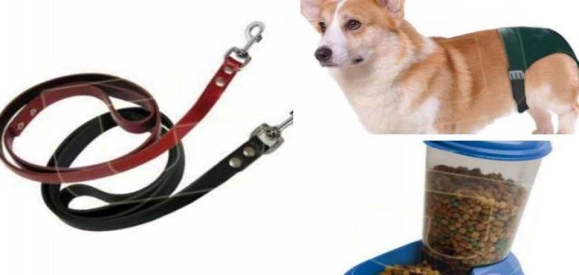 Köpeklerin Diş sağlığı İçin Üretilen Kemik Türleri