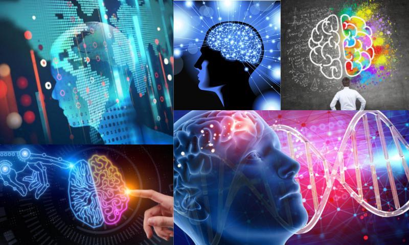 İnternette Yer Alan IQ Testleri Gerçeği Yansıtıyor mu